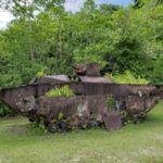 パラオ ペリリュー島ツアーに参加してきました。